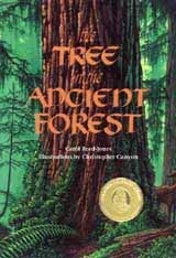 Recommended book for kids about trees: The Tree in the Ancient Forest